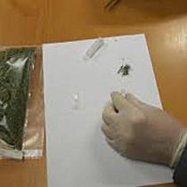 230 gramm füvet foglaltak le Záhonynál - szon.hu
